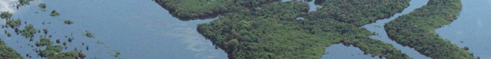 Guia Comercial Amazonas